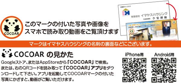 imayasu_cocoar